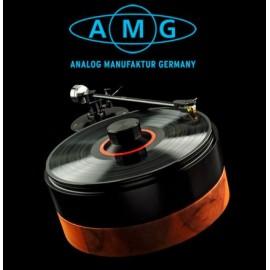AMG  V12